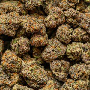 Buy Tangerine Dream weed strain online