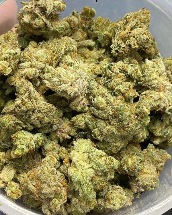 Buy G13 marijuana online