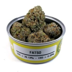 Buy Space Monkey Meds Fatso