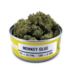 Buy Space Monkey Meds Monkey Glue Graphics