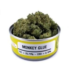 Buy Space Monkey Meds Monkey Glue Graphics