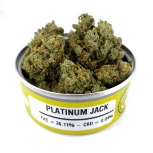 Buy Space Monkey Meds Platinum Jack