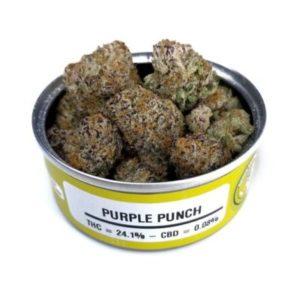 Buy Space Monkey Meds Purple Punch