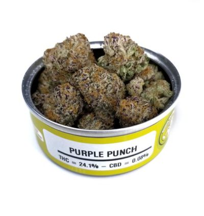 Buy Space Monkey Meds Purple Punch