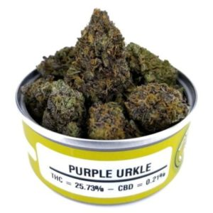 Buy Space Monkey Meds Purple Urkle