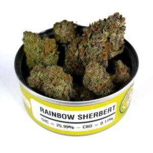 Order Space Monkey Meds Rainbow-Sherbert