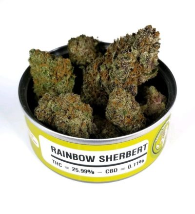 Order Space Monkey Meds Rainbow-Sherbert